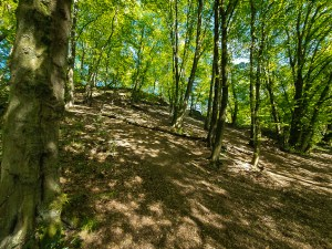 Hügel im Stinderbachtal