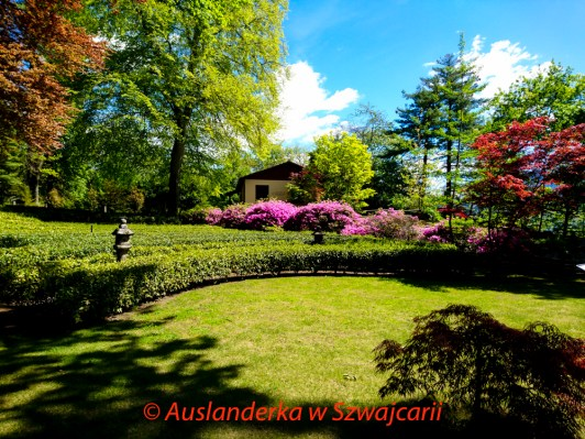20170416_Losone-Monte_JoannaRutkoSeitler_012