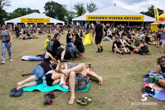 20170802_Woodstock_JoannaRutkoSeitler_015