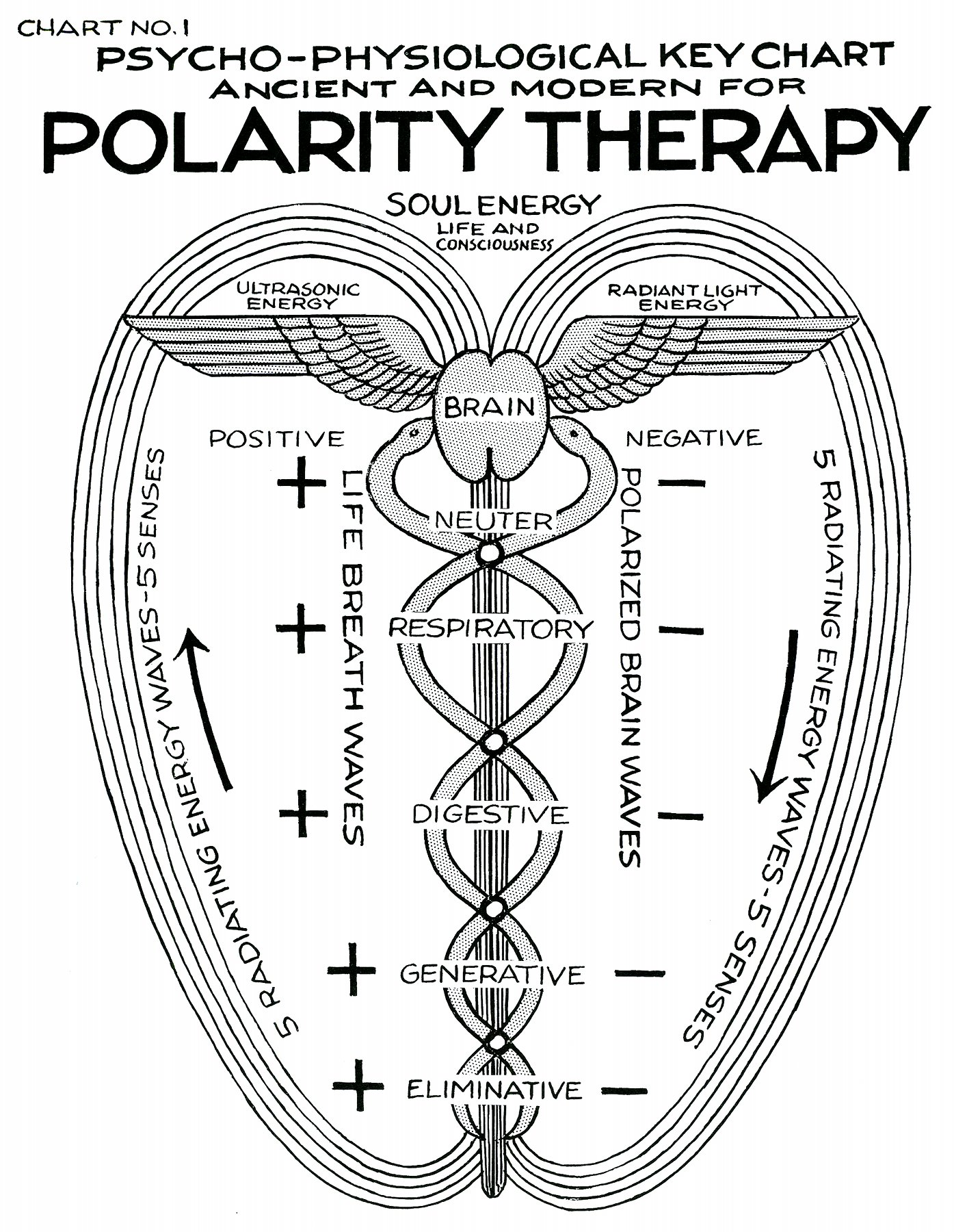 What Is Polarity Therapy