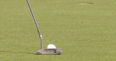 Paul Casey escapes penalty after his golf ball rolled over a bug