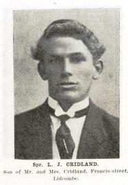 Cumberland Argus - 1919