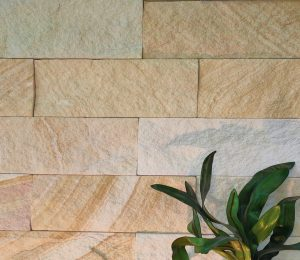 Kirra banded wall stone cladding used in feature wall application with a green plant