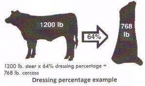 USDA_dressingPercentages