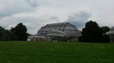 Das riesige Gewächshaus des Botanischen Garten zu Berlin