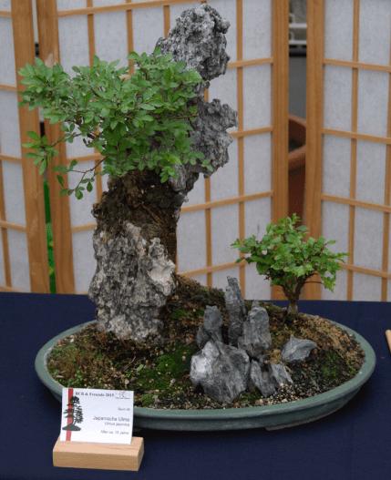 05_Ausstellung