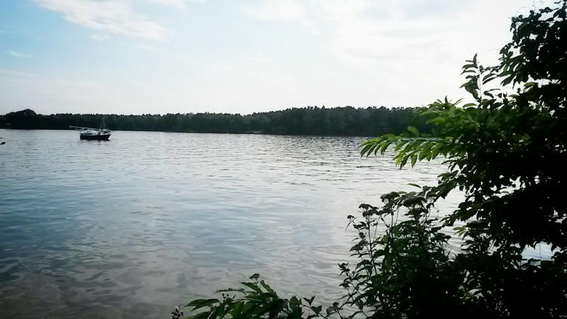 Rituelles Abendbad im Langen See