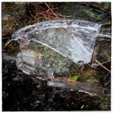 Eisbruch aus der Regentonne