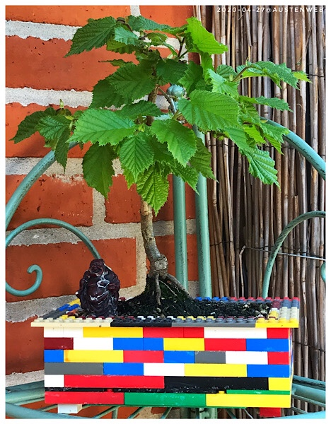 Lego-Buche ;-)
