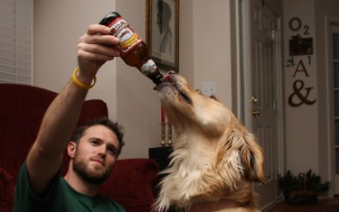 Pints 4 Pups: Help Dogs, Get Drunk