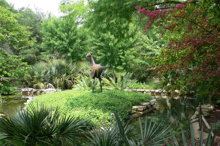 Zilker Park Botanical Garden Flowers Dinosaur Statue