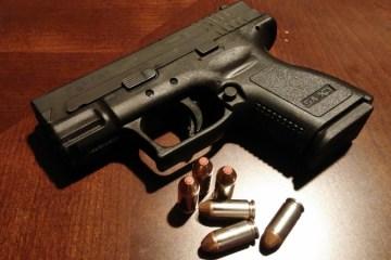 https://pixabay.com/en/handgun-firearms-pistol-gun-weapon-231696/