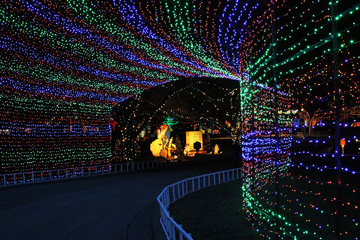 zilker park trail of lights austin holiday christmas zilker tree festival displays HEB