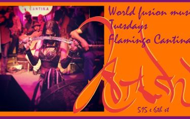 FREE Show Tuesday 1.05 with ATASH at Flamingo Cantina!