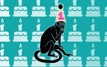 Infinite Monkey Theorem's First Birthday Party!