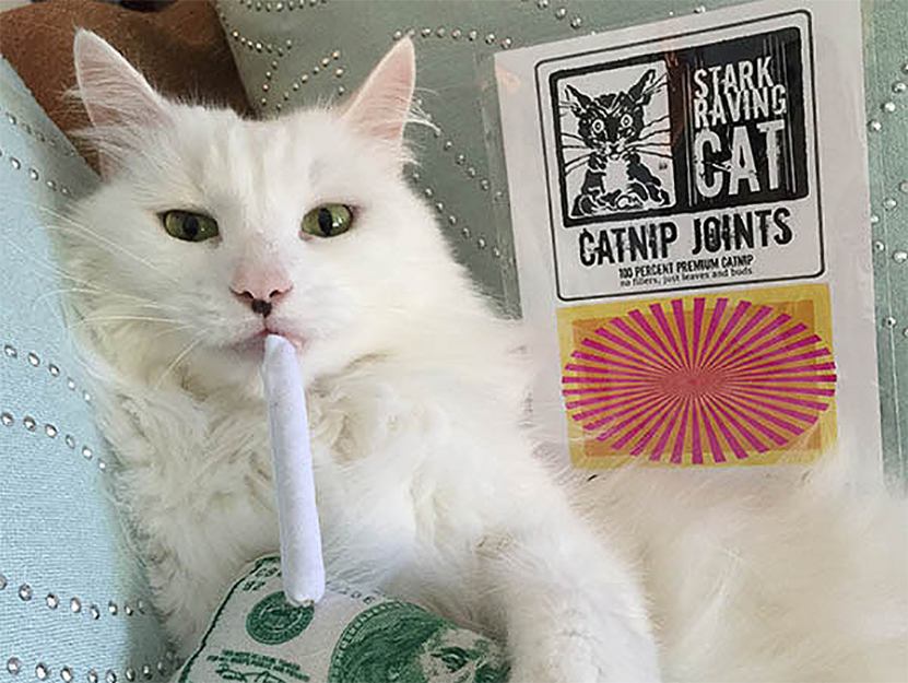 Photo: Stark Raving Cat's Catnip Joints ($)