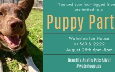 Puppy Party at Waterloo Ice House 360 & 2222!