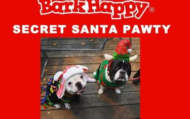 BarkHappy Austin Secret Doggy Santa Party for APA!