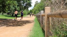 A History of Austin's Famous Hike and Bike Trail, Which Wasn't Always Green