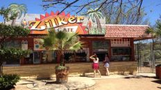 After a Century of Snacking, Barton Springs' Zilker Cafe Looks Forward