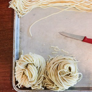 Pasta Rolling and Shaping