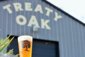 Treaty Oak Brewing Pint