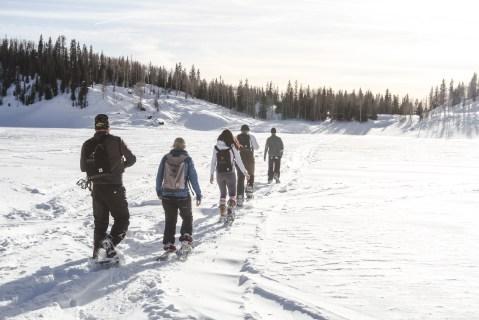 Utah Snow shoe tour