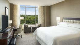 Sheraton Georgetown King guest room