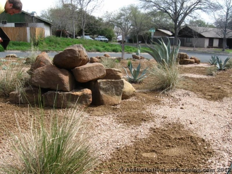 Ornamental-Boulders-Texas-Native-Plants-Designer