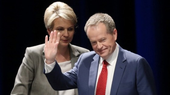 Plibersek for PM