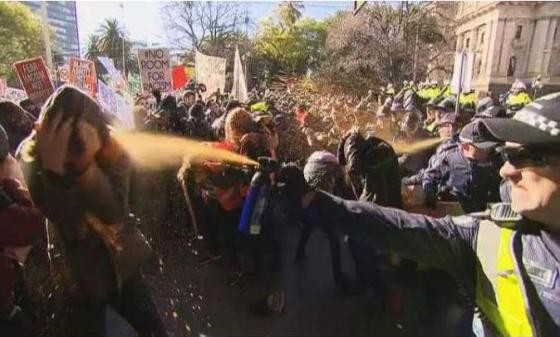Capscium Spraying Lefties like sheep dip