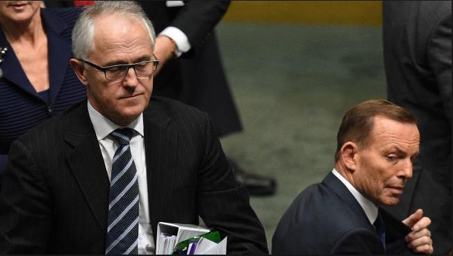 Malcolm Turnbull 's media timing to depose PM Abbott