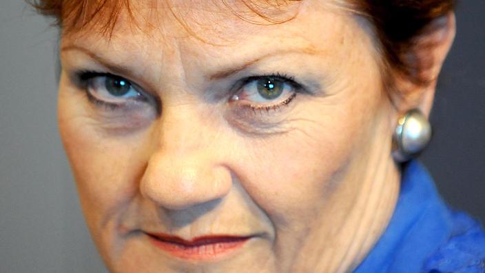Pauline Hanson, Political Cane Toad