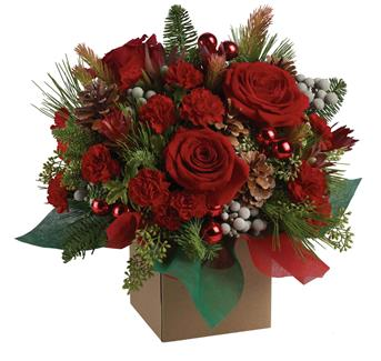 Christmas Flowers Poinsettia Plants Table Arrangements