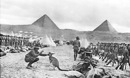 Australian troops at Mena Camp, Egypt, December 1914, looking towards the Pyramids.