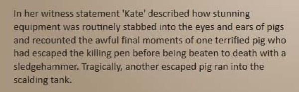 Animals Australia. Kates statement. 21.12.13._edited-1