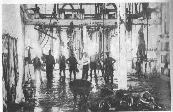 TMG Pg 130. 1913