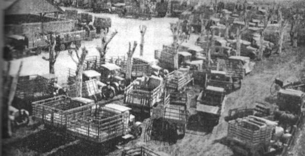TMG Pg 223 1930's