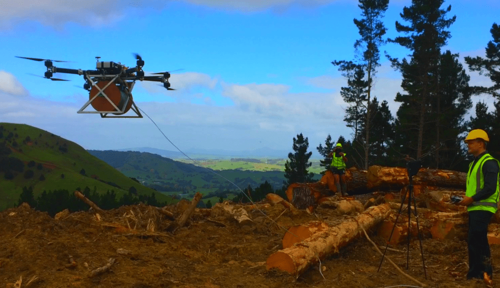 Lifting logs by drone in a Northland forest. (Andy Grant)