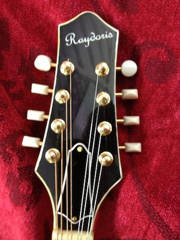 Raydoris Mandolin #1