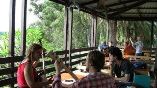 Pittwater Bluegrass Retreat