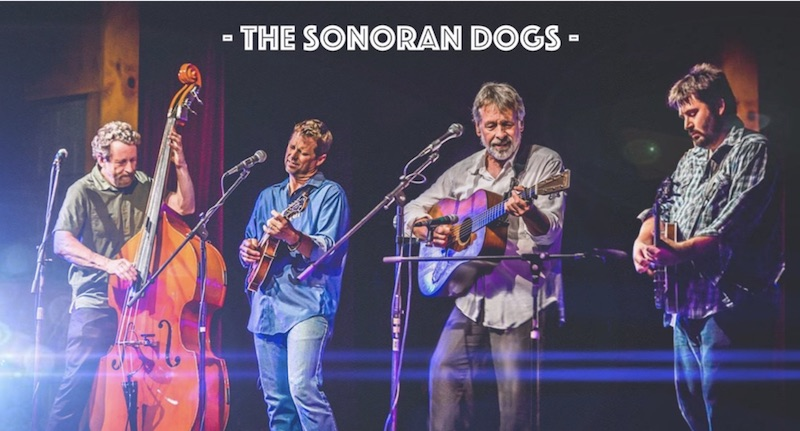 The Sonoran Dogs on Southern Style