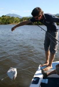 Cairns Estuary Fishing