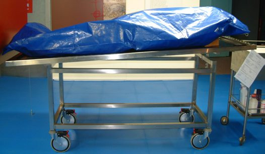 Image result for dead in a body bag