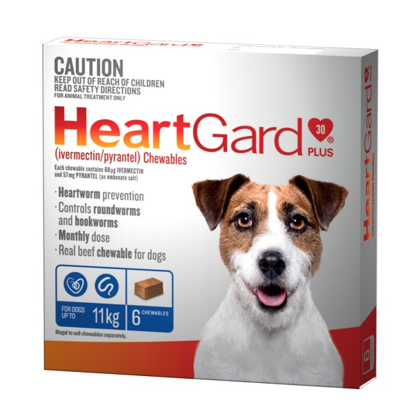 Heartgard Plus Small 6 Pack