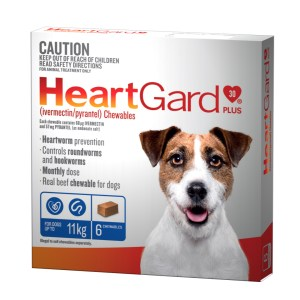 Heartgard Plus Small 6 Pack