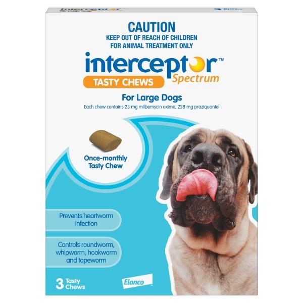Interceptor Large Dog 3 Pack Blue