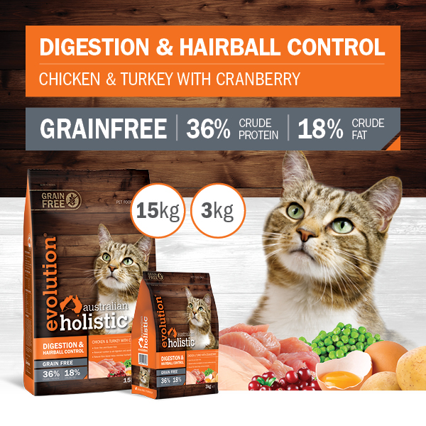 Cat Digestion & Hairball Control