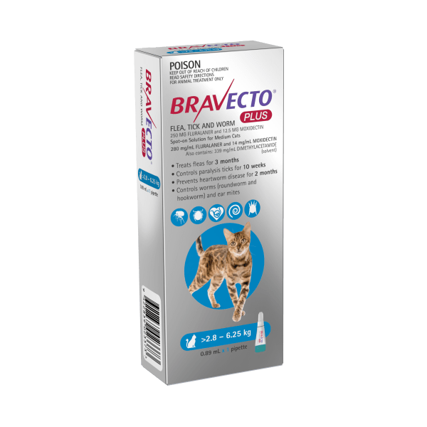 Bravecto Plus Medium Cat