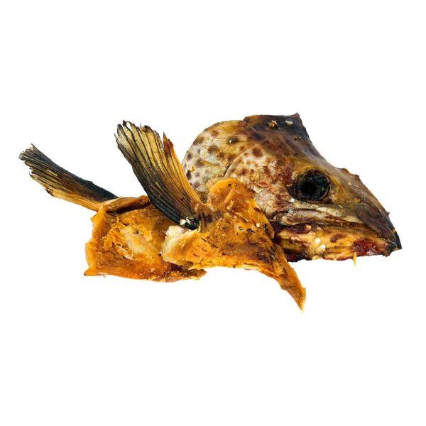 Salmon Head offcuts